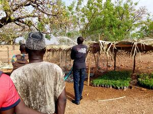 Alaffia Reforestation Project