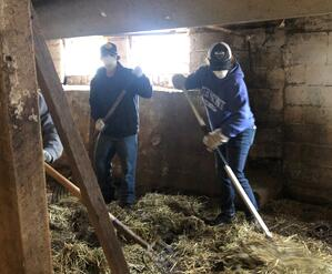 Twincraft employees cleaning out goat barn at Pine Island Community Farm