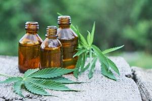 cbd hemp oil in bottles and leaves