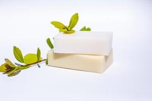 cut slug bar soap