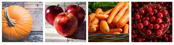 fall season skincare ingredients