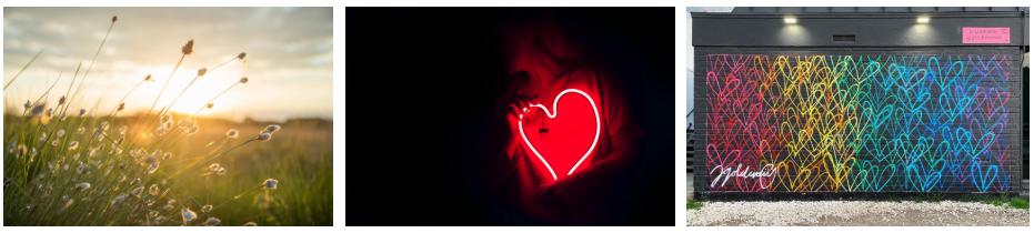 garden neon heart love wall