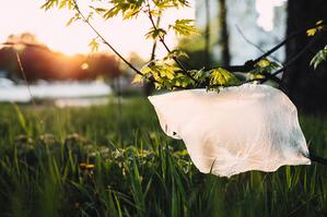 plastic bag with grass